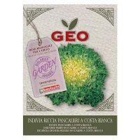 Curly escarole plant geo - 6g