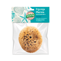 Mediterranean marine sponge