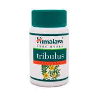 Gokshura tribulus terrestris - 60 capsules