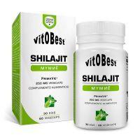 Shilajit - 60 capsules