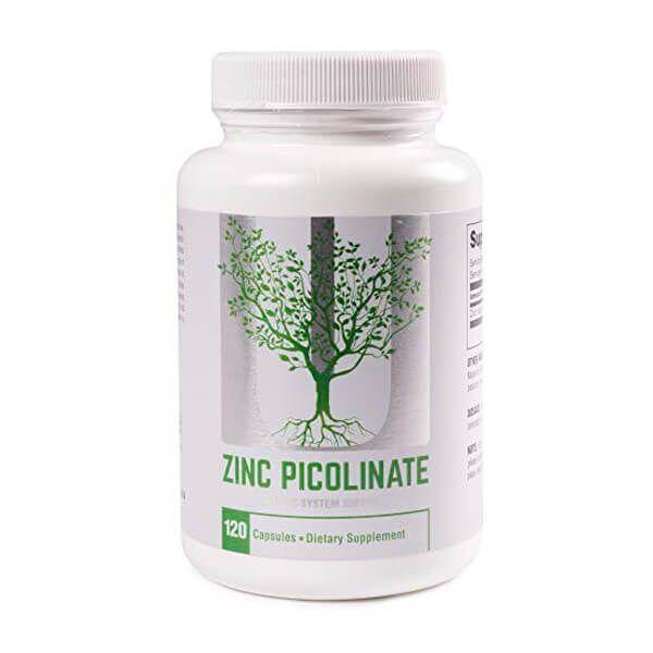 Zinc picolinate - 120 capsules